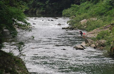 大千瀬川に釣り人
