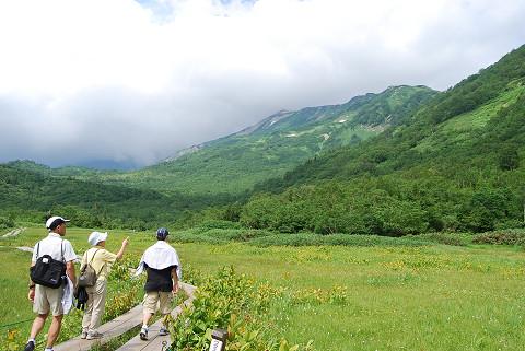 湿原の風景1