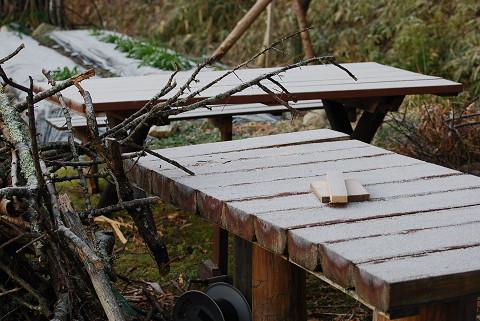 今朝霜が降りた