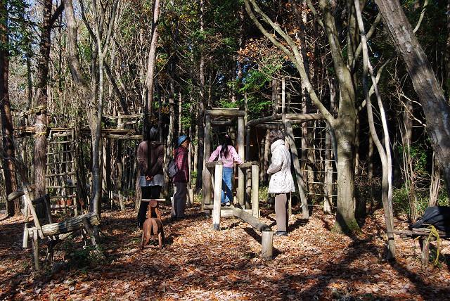 雑木林で遊ぶ