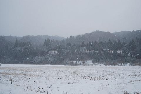 雪の風景1