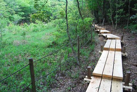 北山湿地の新しい木道