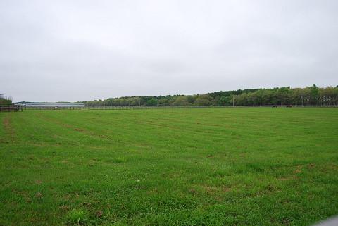 競走馬の牧場