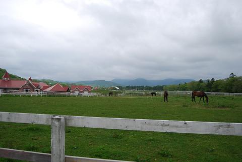 競走馬牧場