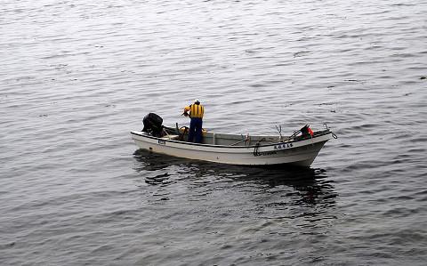 昆布を採る漁師