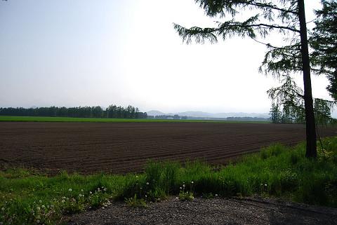 とにかく広い牧場