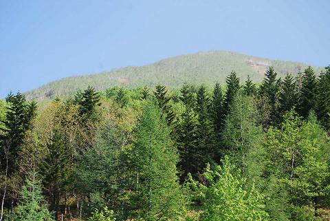 展望台から山の風景