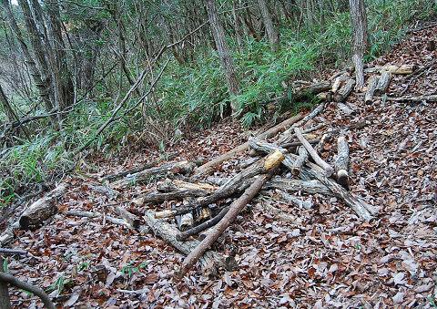 引きずり下ろした薪