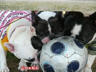 サッカーボール (6)