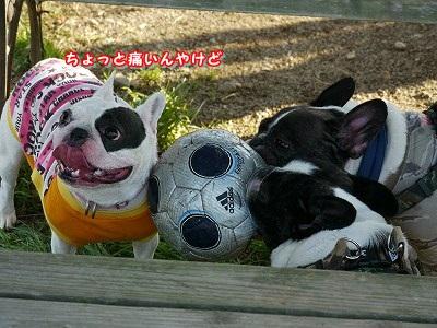 サッカーボール (5)