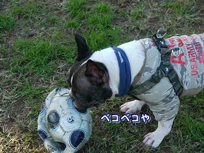 サッカーボール (17)
