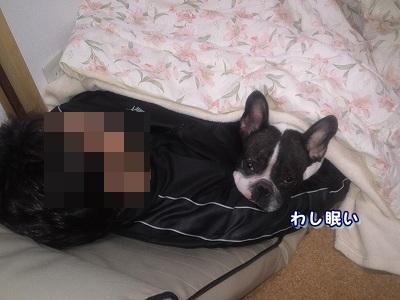 添い寝 (1)