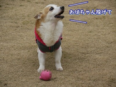 友達 (3)