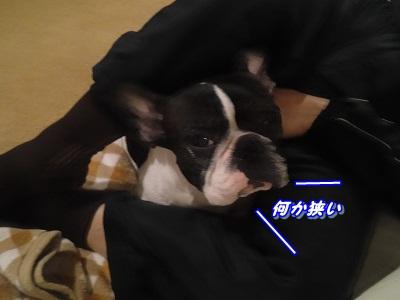 寝相 (4)
