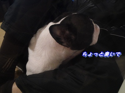 寝相 (8)