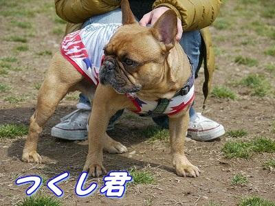 自己紹介 (3)
