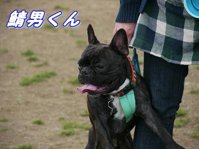 自己紹介 (10)