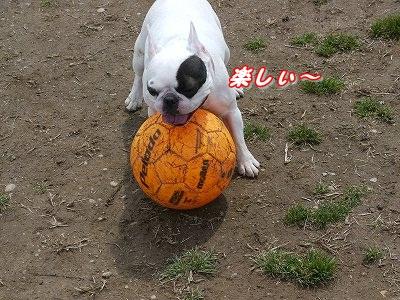 マイボール (4)