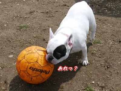 マイボール (3)
