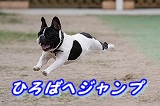 s-ブレイクラシャキュー (5)