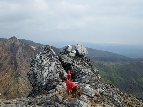 茶臼山頂-3