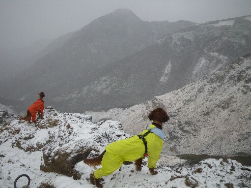 登山 2009.11.17 5