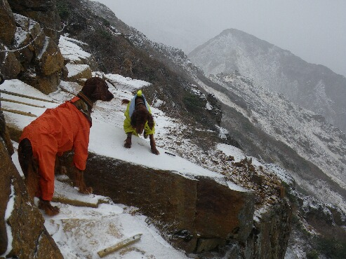 登山 2009.11.17 15