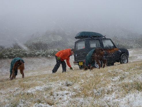 今日も雪 2009.11.21