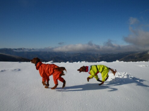 今季初の雪山 2009.12.08