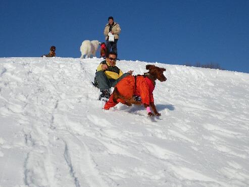 2009.12.30 たかつえスノーシュー 4