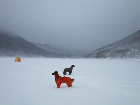桧原湖-2