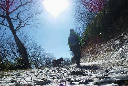 2010.12.19 山の散歩 5
