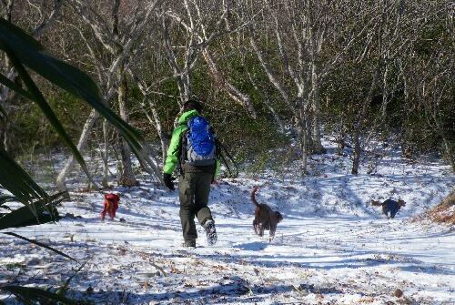 2010.12.19 山の散歩 6