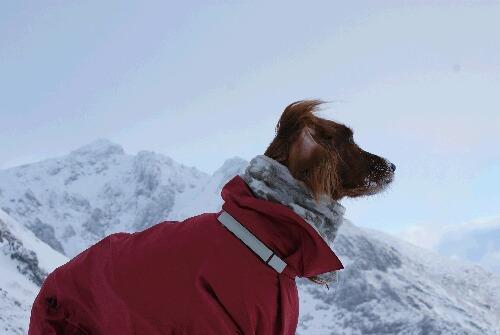 2011年 茶臼岳初登山-5