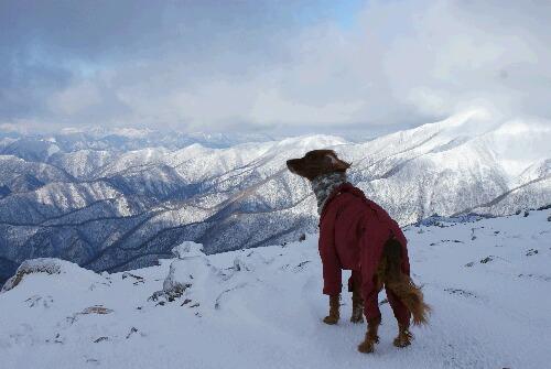 2011年 茶臼岳初登山-3