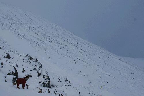2011年 茶臼岳初登山-14