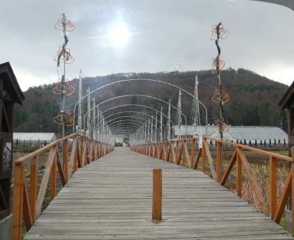 山中湖イルミネーション