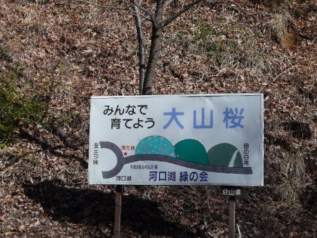 母の白滝へ行く道