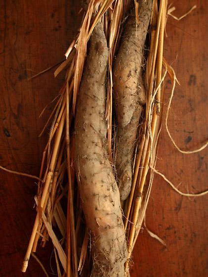 自然薯:調理前