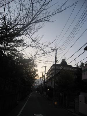 IMG_0228S.jpg