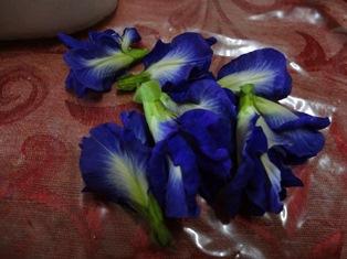 ナシクラブの花