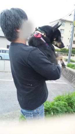 凛ちゃんのお散歩①