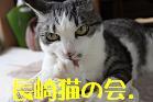 長崎猫の会.
