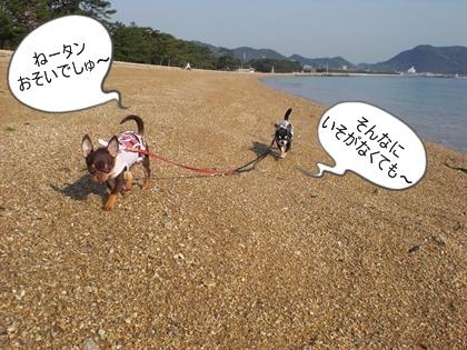 ダイヤ☆ワールド