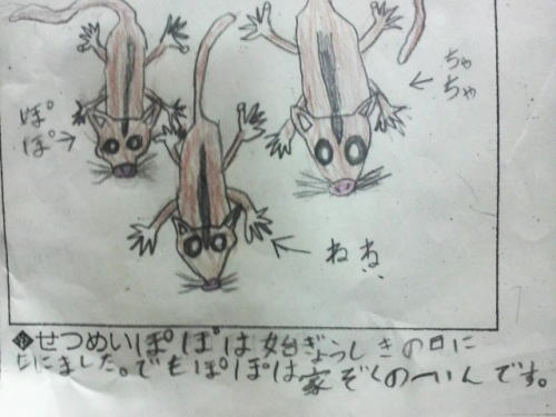 フクロモモンガ 次男が描いた絵