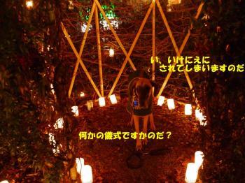 candle night 09-04