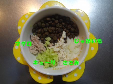 DSC05626_convert_20120629201245.jpg