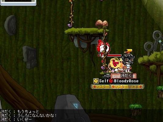 Maple100208_000731.jpg