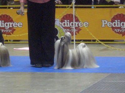 20091220-26