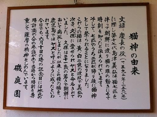 20101123猫神社03